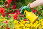 pesticidai 2016